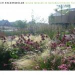 landschappelijke tuin