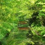 nieuwe brug over de singel maakt het park beter bereikbaar