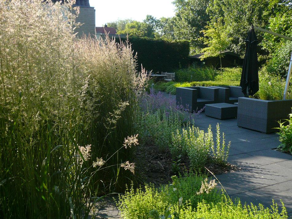 particuliere-tuin-Hoorn-4