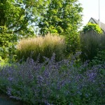 particuliere-tuin-Hoorn-6